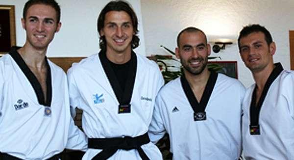 ibrahimovic-taekwondo-1476512556-800